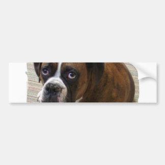Boxer Dog Bumper Sticker