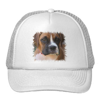 Boxer Dog Design Baseball Hat