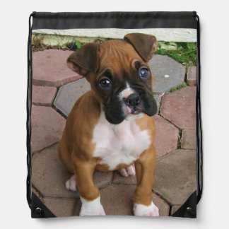 Boxer dog drawstring backpack