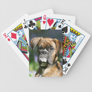 Boxer Dog Headshot Bicycle Playing Cards