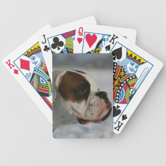 Boxer Dog in the Snow Bicycle Playing Cards
