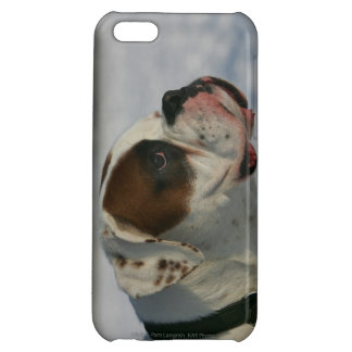Boxer Dog in the Snow iPhone 5C Cover