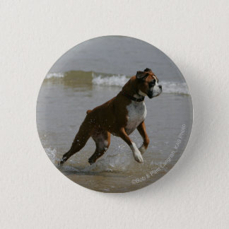 Boxer Dog in Water 6 Cm Round Badge