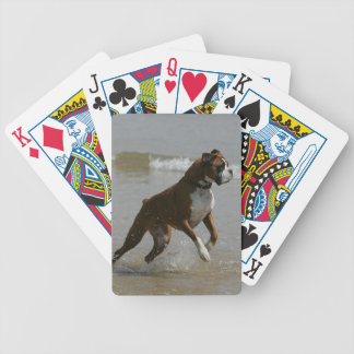 Boxer Dog in Water Bicycle Playing Cards