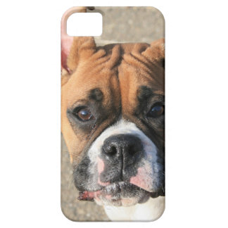 Boxer dog iPhone 5 Barely There Universal Case