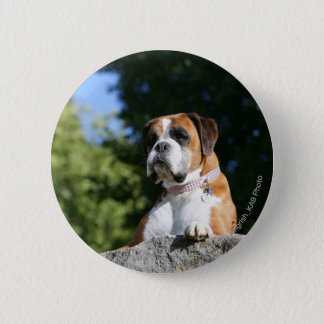 Boxer Dog Laying on a Rock 6 Cm Round Badge