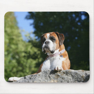 Boxer Dog Laying on a Rock Mouse Mat