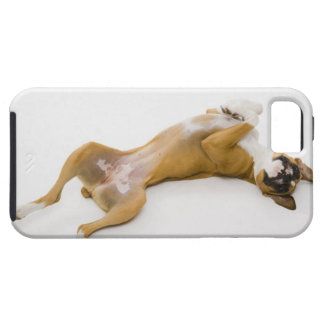 Boxer dog laying on her back on the floor iPhone 5 case