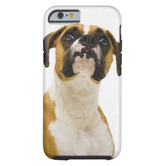 Boxer dog looking up tough iPhone 6 case