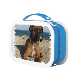 Boxer Dog Lunch Box