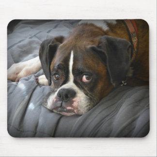 boxer, dog mouse mat