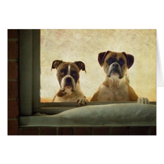 Boxer Dog Note Card - Christmas or Greeting