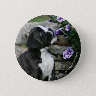 Boxer Dog Panting 6 Cm Round Badge
