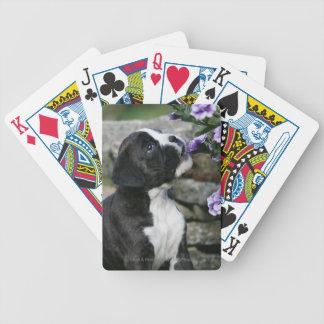 Boxer Dog Panting Bicycle Playing Cards