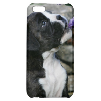 Boxer Dog Panting Cover For iPhone 5C