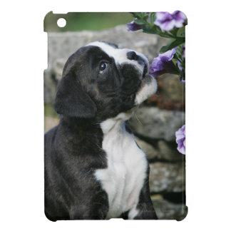 Boxer Dog Panting iPad Mini Covers