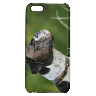 Boxer Dog Profile Cover For iPhone 5C