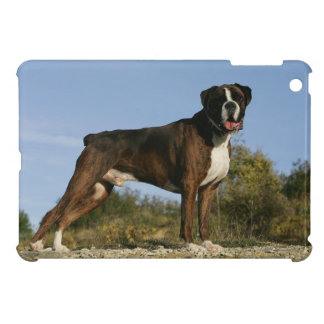 Boxer Dog Show Stance Cover For The iPad Mini