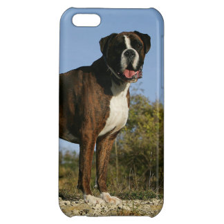 Boxer Dog Show Stance iPhone 5C Covers
