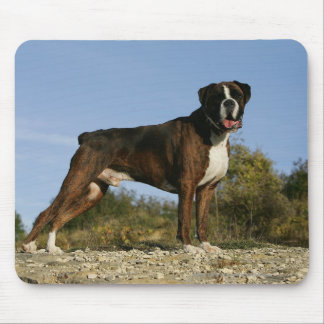 Boxer Dog Show Stance Mouse Mat