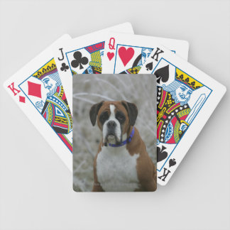 Boxer Dog Sitting in the Frost Bicycle Playing Cards