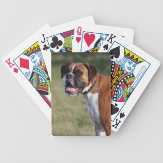 Boxer Dog Standing Bicycle Playing Cards