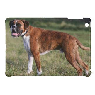Boxer Dog Standing iPad Mini Covers