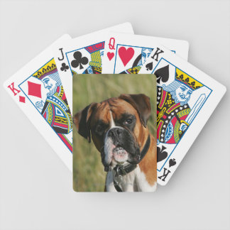 Boxer Dog Staring at Camera Bicycle Playing Cards