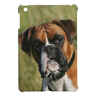 Boxer Dog Staring at Camera Case For The iPad Mini