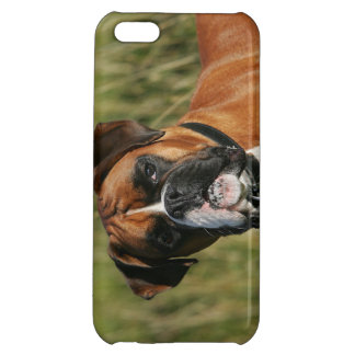 Boxer Dog Staring at Camera iPhone 5C Case