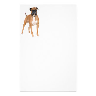 Boxer Dog Stationery