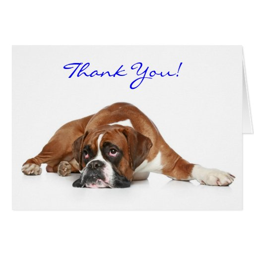 Boxer Dog Thank You  Notecard - Thank You Inside Greeting Card