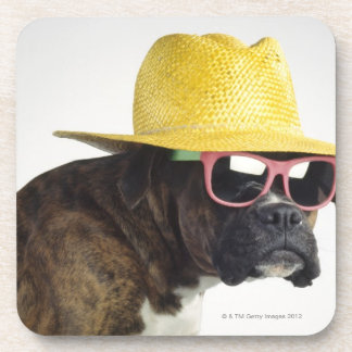 Boxer dog with hat and glasses drink coaster