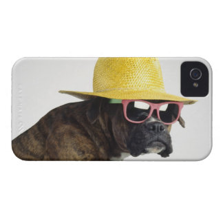 Boxer dog with hat and glasses iPhone 4 Case-Mate cases