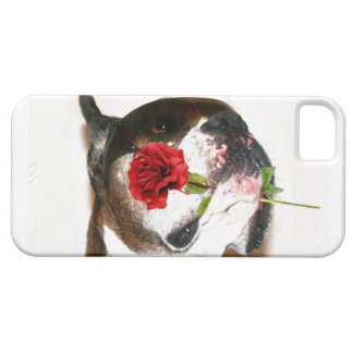 Boxer dog with rose iPhone 5 covers
