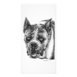 Boxer Drawing Personalized Photo Card