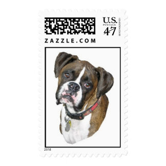 Boxer Face Stamp