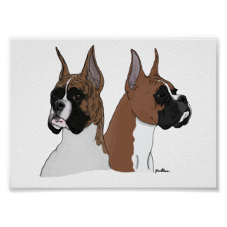 Boxer Heads In Digital Art on Poster