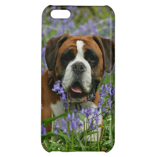 Boxer Laying in Bluebells Case For iPhone 5C