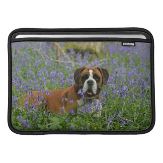 Boxer Laying in Bluebells MacBook Sleeve