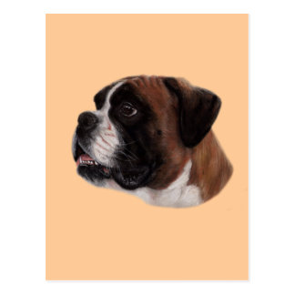 Boxer Pastel Painting Post Card