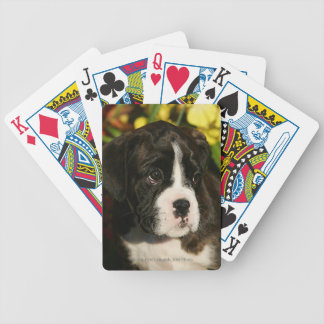 Boxer Puppies Bicycle Playing Cards