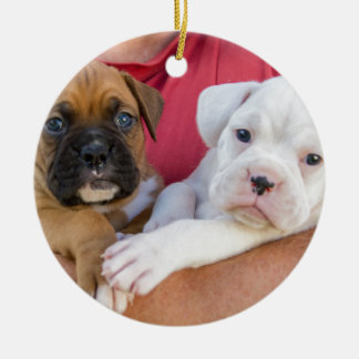 Boxer Puppies Christmas Ornament
