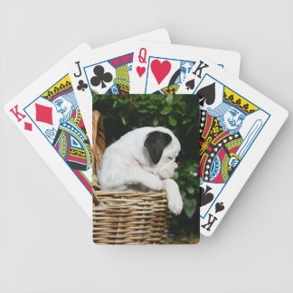 Boxer Puppies in Basket Bicycle Playing Cards
