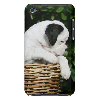 Boxer Puppies in Basket iPod Case-Mate Cases