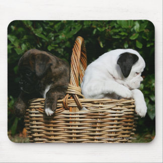 Boxer Puppies in Basket Mouse Mat