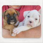 Boxer Puppies Mouse Mat