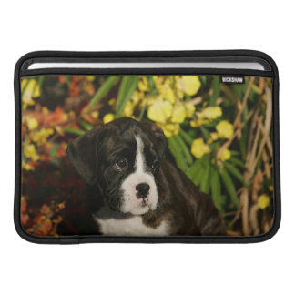 Boxer Puppies Sleeves For MacBook Air