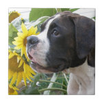 Boxer Puppy and Sunflowers Tile