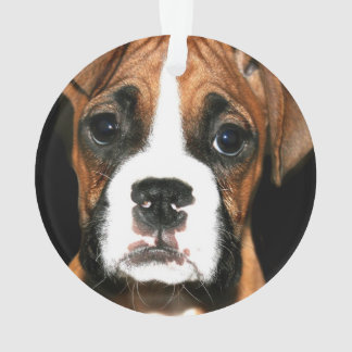 Boxer puppy dog ornament